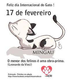 17 de fevereiro Dia Mundial do Gato #gatos #cats