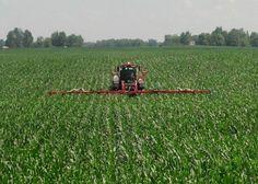 MillerNitro 24-row N toolbar - late sidedress    Equipment mods and photo by: Mike Shuter, Shuter Sunset Farms