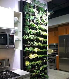 indoor vertical herb garden