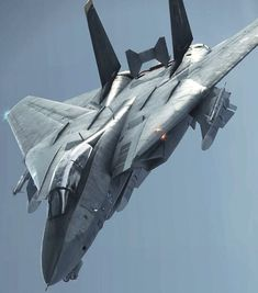 Military Jets, Military Aircraft, Fighter Aircraft, Fighter Jets, Top Gun Movie, Fun Fly, F14 Tomcat, Black Beast, Military Equipment