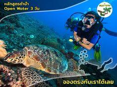 Pub Crawl, Beach Bars, Koh Tao, Open Water, Snorkeling, Scuba Diving, Things To Do, Sunrise, Thailand