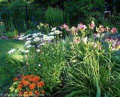 Morning in the garden. http://www.joenesgarden.com/morning-garden-blooms-butterflies-and-hummingbirds/