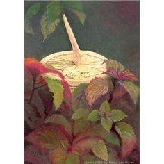New Art Print Picture Sundial Summer Garden Plant FREE SHIP Nancy Lee Moran
