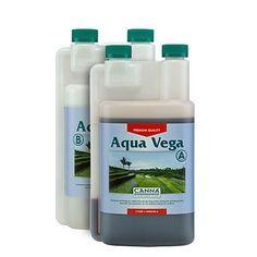 canna-aqua-vega-A-B