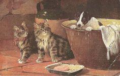 Kirjeitä myllyltäni: vintage postcard