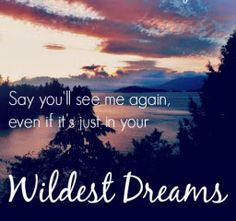 Say you'll See me Again, Even if it's Just in your WILDEST DREAMS. -Taylor Swift