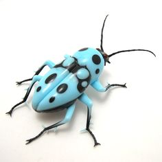 Bug!  Glass Polka Beetle Insect, handmade by vetropod - amazing details!