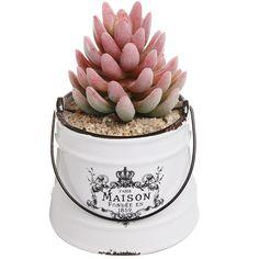 Amazon.com: Rustic White Ceramic French Country Maison Pail Design Succulent Planter Pot / Decorative Accessory Jar: Patio, Lawn & Garden