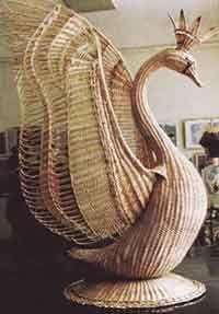 .kráľovská labuť