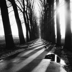 """By Wouter Brandsma.    """"I am on a journey and have no clue where it will end. Like I mentioned in my last year's post, in the previous decade I used to do primarily landscape photography. And sure, it was possibly different from the mainstream, since it was mostly black & white and I used a small sensor camera for taking these photographs. But to me it felt like my journey was still just beginning. I went from color work in the nineties to predominantly black & white in the first decade of…"""