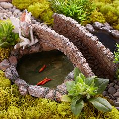Look at this The Magic of a Fairy Garden on #zulily today!