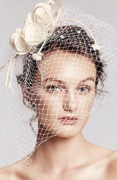 Fab floral birdcage veil