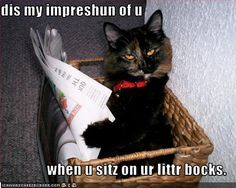This is my favorite LOLcat!