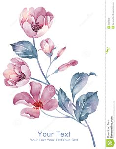 watercolor-illustration-flower-simple-background-decoration-as-46821648.jpg (1009×1300)