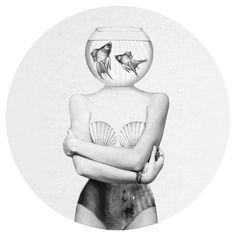 Pisces | Jen Rome Wall Decal | WallsNeedLove