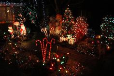 Christmas light displays in and around Seattle, including walk-through and drive-through displays and some more unique options like the Christmas Ship Festival.