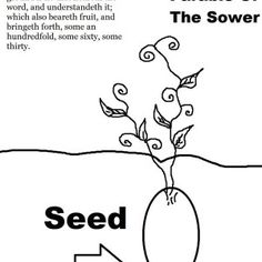 The Parable of The Sower Activity Sheet.jpg (1019×1319