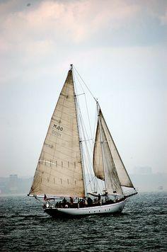 NY Sailboat