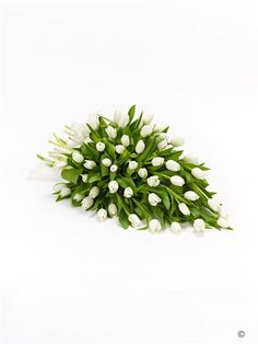 Tulip Posy. A beautiful arrangement of pure white tulips to create this simple, elegant posy.