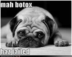 Botox Failed