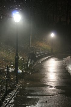 Rainy night at Central Park, NY