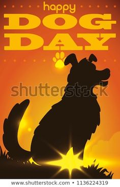 Find Poster Elegant Dog Silhouette Gazing Serene stock images in HD and millions of other royalty-free stock photos, illustrations and vectors in the Shutterstock collection. Thousands of new, high-quality pictures added every day. Dog Silhouette, Dog Days, Silhouettes, Serenity, Celebration, Royalty Free Stock Photos, Sunset, Elegant, Illustration