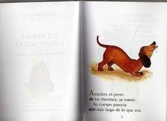 Un perro confundido cecilia beuchat