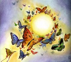 Stephanie Pui-Mun Law - Butterfly Kaleidoscope