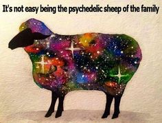 I was just thinking the other day I'm not the black sheep, but maybe the red or green sheep of the family. How fitting!