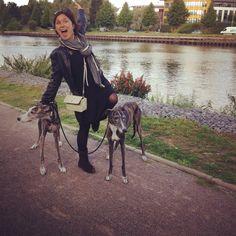 Aujourd'hui c'est une journée de wouf! #journeeduchien #journeeinternationaleduchien #deule #citadelledelille #verlinghem #lambersart #lamadeleine #lille #lillemaville #dogsitting #dogsittinglille #dog #chien  #LiveInLille