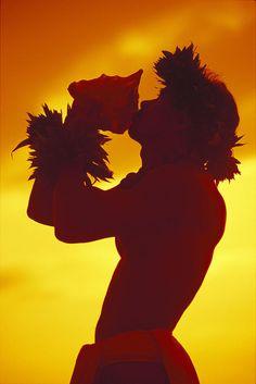Hawaii, Maui, Napili, Hawaiian man at sunset blow conch shell orange sky traditional haku kupe'e Polynesian Dance, Polynesian Men, Polynesian Culture, Polynesian People, Polynesian Islands, Hawaiian Dancers, Hawaiian Art, Hawaiian Quotes, Hawaiian Legends