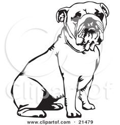 Bulldog Is Laughing Coloring Pages
