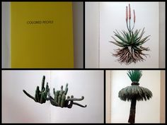colored people 1972 by edward rusha is a small book containing colorful photos of - Colored People Book