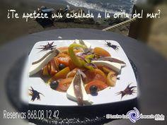 ¿te apetece disfrutar de una ensalada como esta en la orilla del mar?
