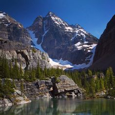 The Lake O'Hara area is possibly the most stunning area of the Canadian Rocky Mountains #lakeohara #yoho #canada
