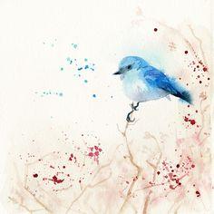 Blule bird