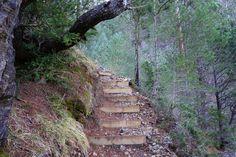 Tramo habilitado con escaleras, sin ninguna dificultad