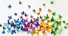 Set of 12 3D PVC Butterflies for $5.