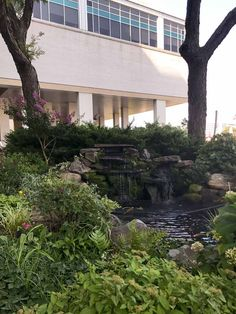 MG's Lawn Green designed and installed this welcoming water feature at Montefiore Einstein Center for Cancer Care. We manage several commercial landscaping clients year round. Residential Landscaping, Commercial Landscaping, Pond Water Features, Green Lawn, Landscaping Ideas, Koi, Landscape, Plants, Scenery