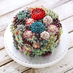 The culinary designer Iven Kawi, based in Jakarta, unveils her Flower Cakes, some magnificent culinary creations imitating terrariums, filled with succulent pla
