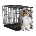 MidWest Dog Crate. A classic crate for you medium sized dog.