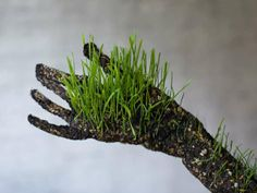 Human Plant Performances - The Interesting Human Grass Sculptures by Mathilde Roussel-Giraudy (GALLERY)