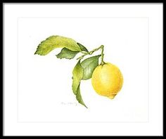 Lemon Framed Print by Fran Henig