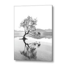 Wanaka Tree Black And White Metal Print by Joshua Small