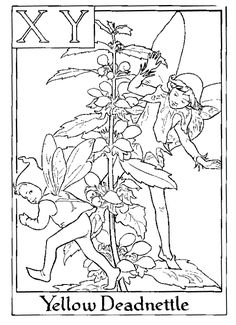 Fairy printable colouring page. XY is for...  Yellow Deadnettle?  Okay then.  Lol, also this page at full size is a bit smaller then most of them.