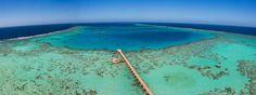 Parc national marin de Sanganeb et Parc national marin de la baie de Dungonab – île de Mukkawar, au SoudanCes huit sites font partie, depuis dimanche 17 juillet 2016, des merveilles naturelles et culturelles inscrites au Patrimoine mondial de l'Unesco. À découvrir en images.Voici Sanganeb, une structure récifale corallienne située à à 25 km au large des côtes du Soudan, au centre de la mer Rouge dont elle est l'unique atoll. La baie de Dungonab et l'île de Mukkawar,situées à 125 km au nord…