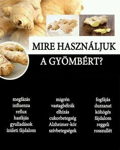 Mire használjuk a gyömbért? | Socialhealth Healthy Tips, Healthy Recipes, Health 2020, Nutrition, Health Eating, Kraut, Health Remedies, Eating Well, Food Hacks