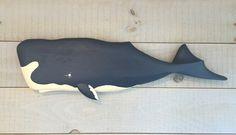 Sperm Whale Plaque