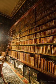 Spooks in the Library, Brodsworth Hall