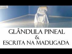 Glândula Pineal e Escrita na Madrugada - Waldo Vieira (Conscienciologia)
